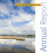 CASQA 2008 Annual Report