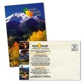 Calendar of Events Postcard