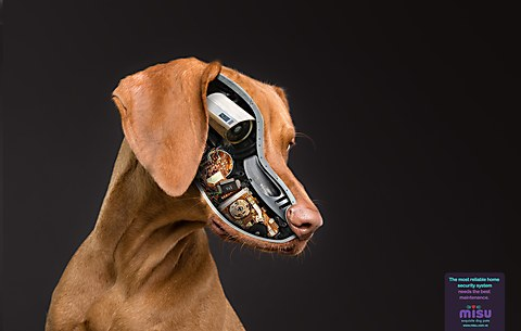 Misu Pet Food print ads